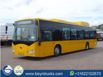 Городской автобус BYD EBUS 12 GREENCITY full electric